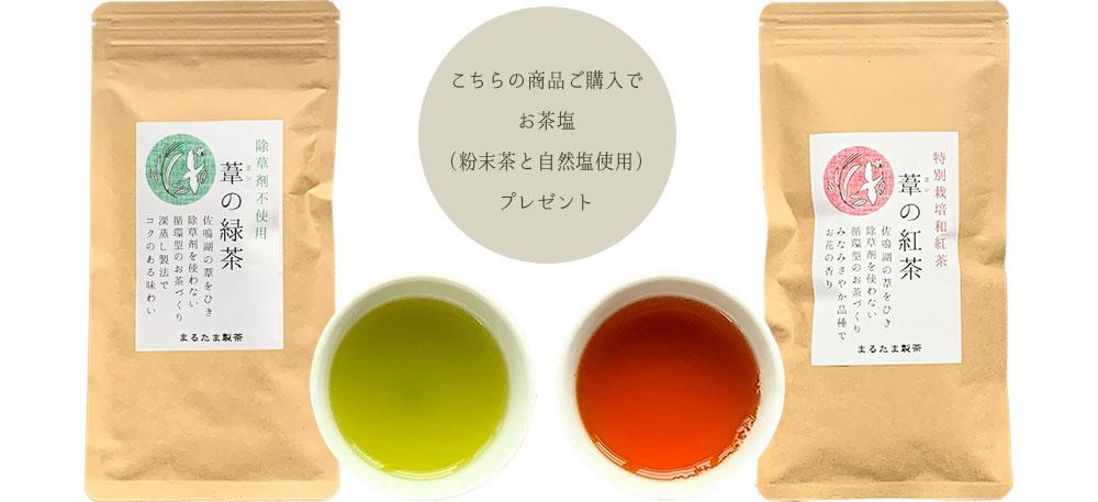 葦の緑茶 紅茶